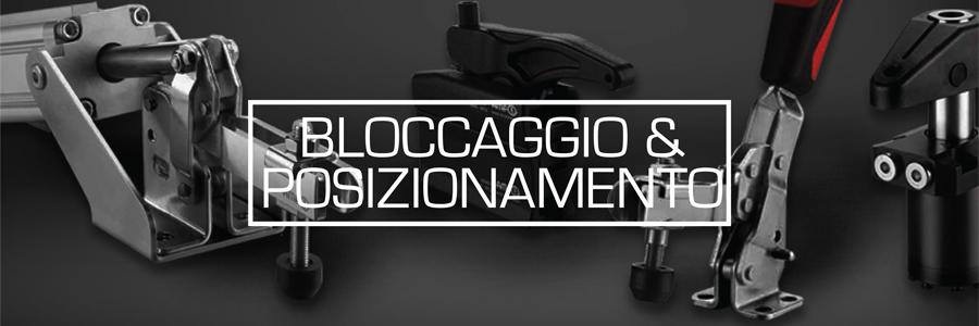 BLOCCAGGIO E POSIZIONAMENTO